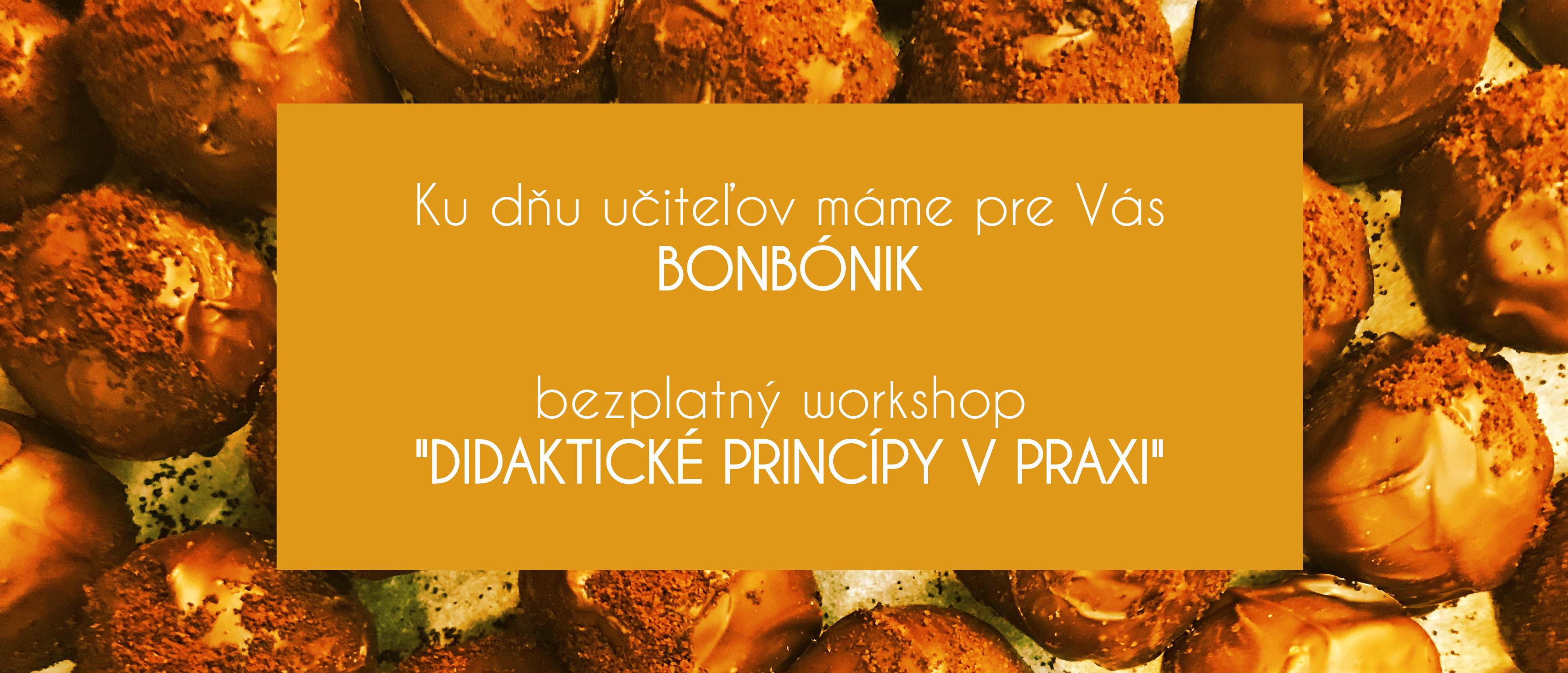 Didakticke_principy_workshop